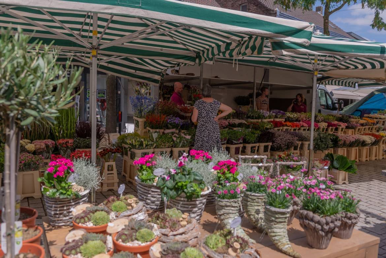 weekmarkt-panningen-foto-1.jpg