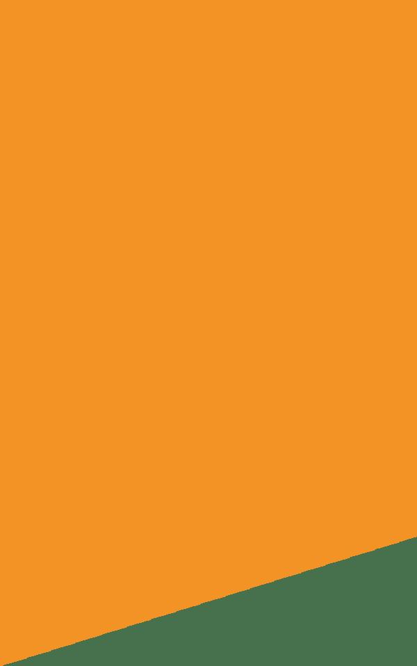 achtergrond-oranje2.png